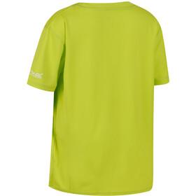 Regatta Alvarado III - Camiseta manga corta Niños - verde